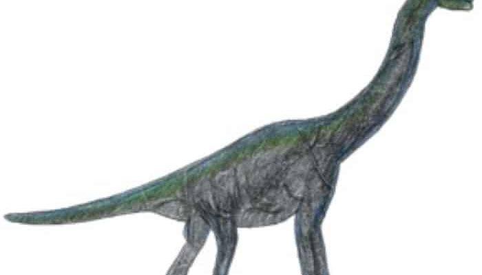 Forschergeburtstag zum Thema Dinosaurier