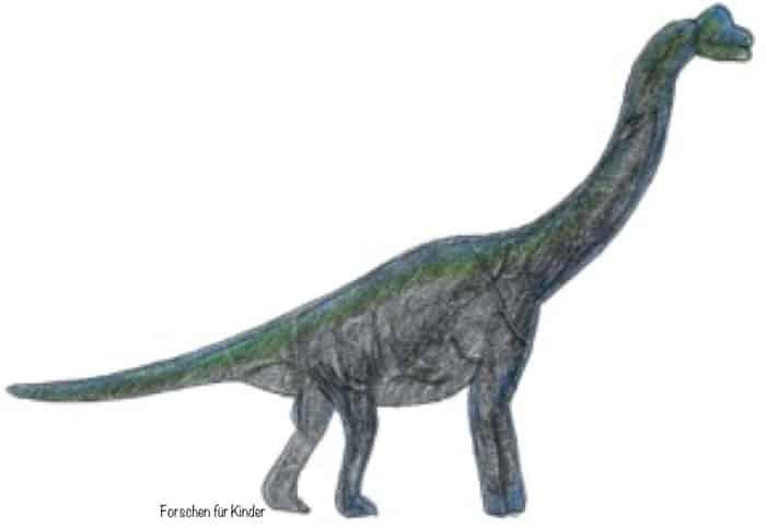 Forschen für Kinder Dino
