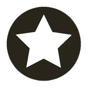 Aufkleber klein Stern schwarz