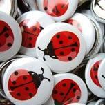 Buttons & Sticker